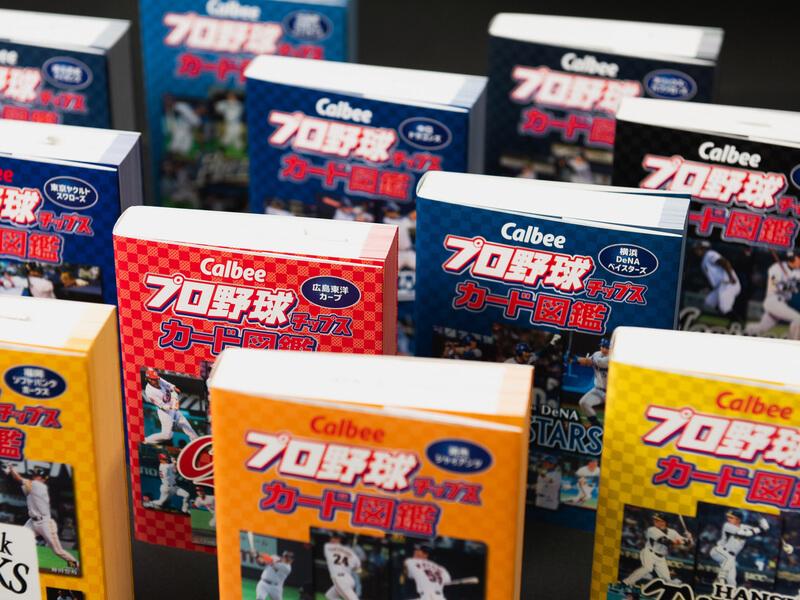 プロ野球カード図鑑の全集が綺麗に並んで立っている写真